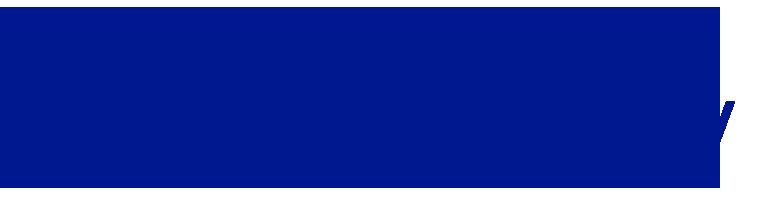 Schnittstelle Microsoft Dynamics NAV